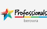 professionals_over